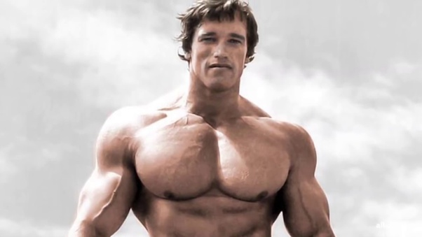 HOW TO BUILD A BIG CHEST