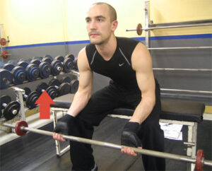 small forearms