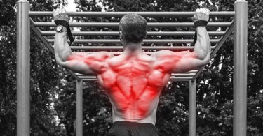 big chest small back